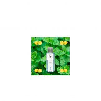 Limón hierbabuena ambientador mikado